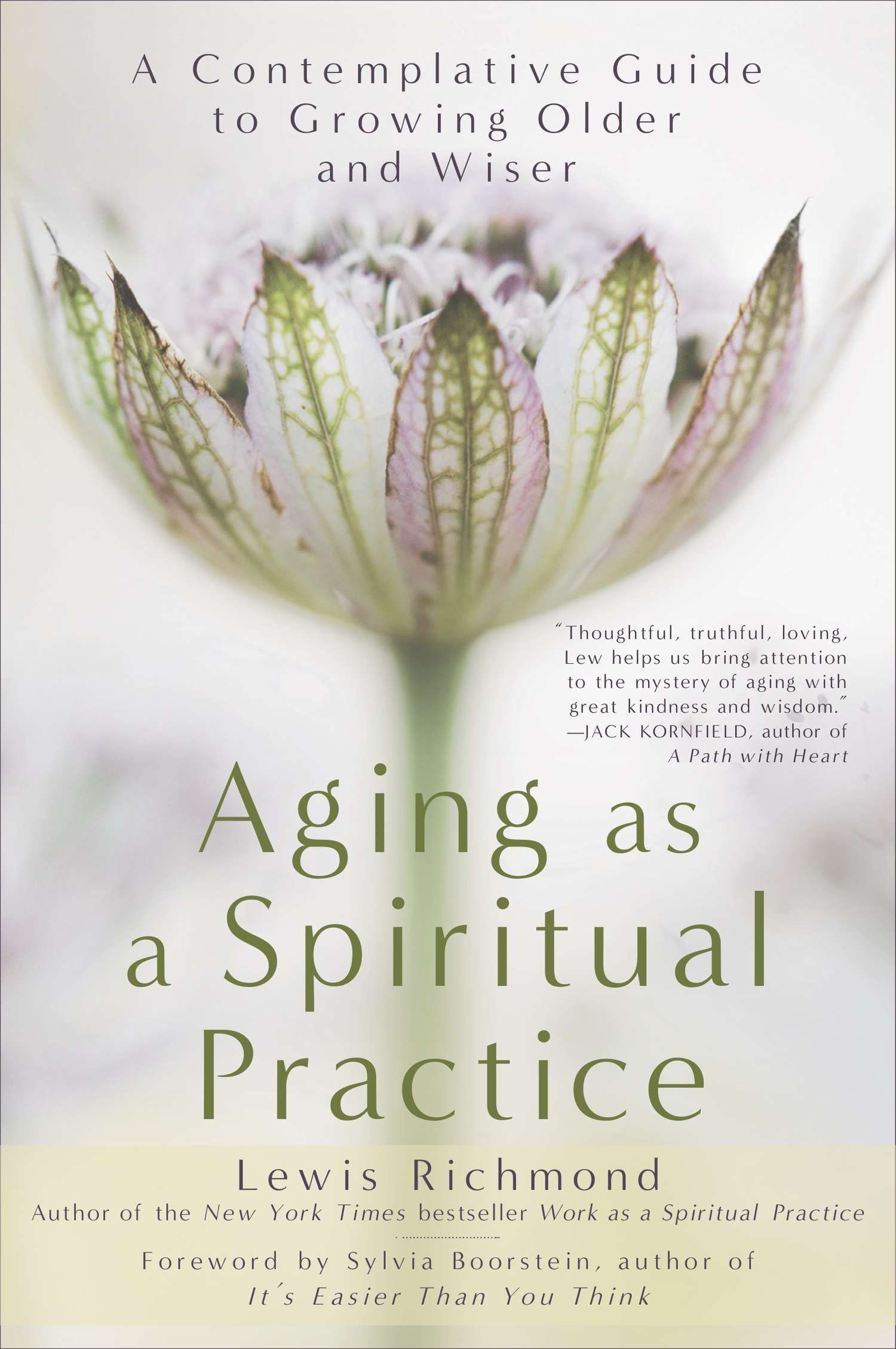 Aging Ageing As A Spiritual Practice (book)