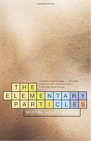 The Elementary Particles by Michel Houellebecq - Paperback Fiction