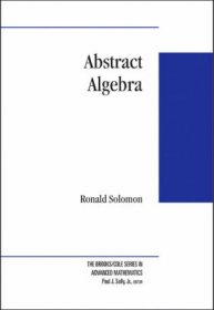 Abstract Algebra by Ronald Solomon - Hardcover USED Very Good Mathematics