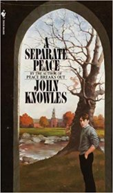 A Separate Peace by John Knowles - Paperback USED Classics