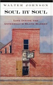 Soul by Soul : Life Inside the Antebellum Slave Market by Walter Johnson - Paperback