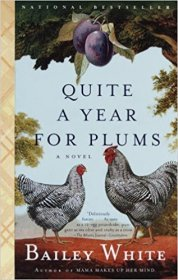 Quite a Year for Plums by Bailey White - Paperback Fiction