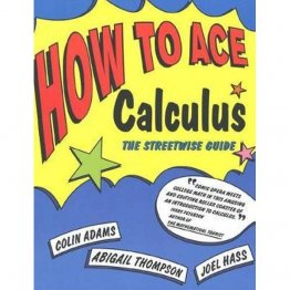 How to Ace Calculus : The Streetwise Guide - Paperback