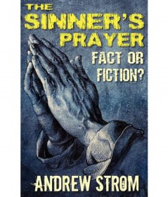 The Sinner's Prayer : Fact or Fiction by Andrew Storm - Paperback