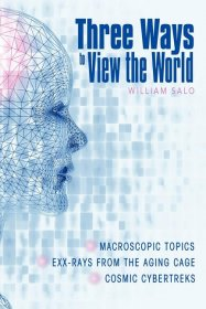 Three Ways to View the World by William Salo - Paperback Philosophy