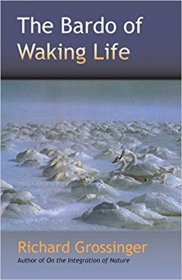The Bardo of Waking Life by Richard Grossinger - Paperback Nonfiction
