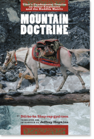 Mountain Doctrine : Tibet's Fundamental Treatise on Other-Emptiness and the Buddha Matrix