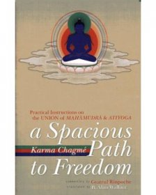 A Spacious Path to Freedom : The Union of Mahamudra and Atiyoga by Gyatrul Rinpoche - Paperback