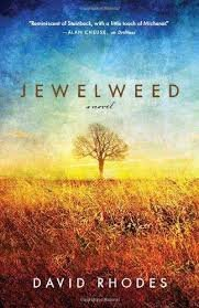 Jewelweed : A Novel in Hardcover by David Rhodes