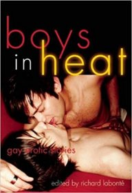 Boys In Heat : Gay Erotic Stories by Richard Labonté, editor - Paperback
