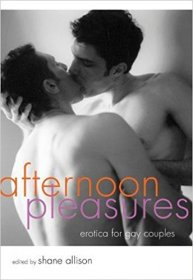 Afternoon Pleasures : Erotica for Gay Couples by Shane Allison, editor - Paperback