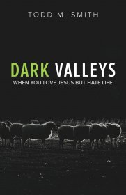 Dark Valleys : When You Love Jesus But Hate Life by Todd M. Smith - Paperback