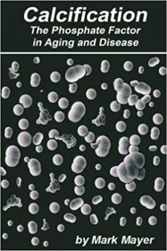 Calcification : The Phosphate Theory in Aging and Disease by Mark Mayer - Paperback