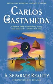 A Separate Reality by Carlos Castaneda - Paperback
