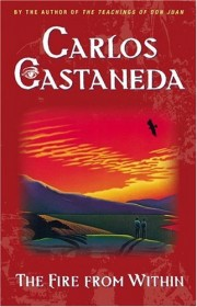 The Fire from Within by Carlos Castaneda - Paperback