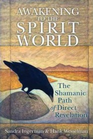 Awakening to the Spirit World: The Shamanic Path of Direct Revelation by Sandra Ingerman and Hank Wesselman - Paperback